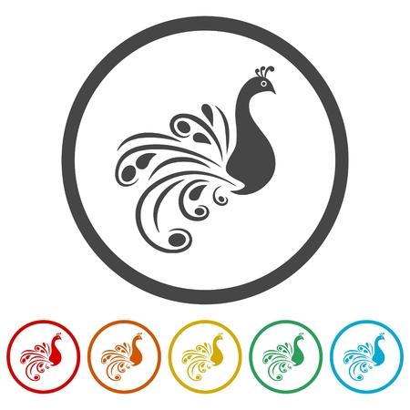 Peacock - vector Illustration