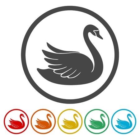 Conjunto de iconos de cisne Diseño gráfico plano - Ilustración