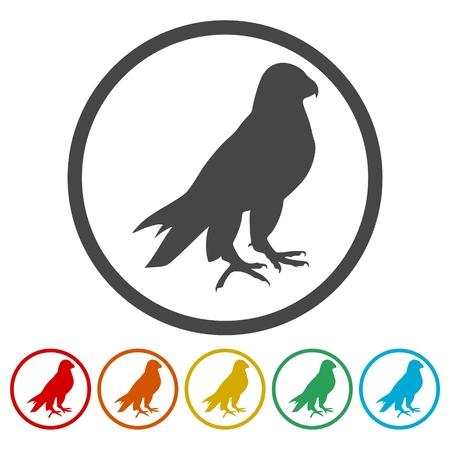 Falcon bird icons set