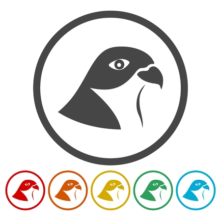 Falcon bird icons set