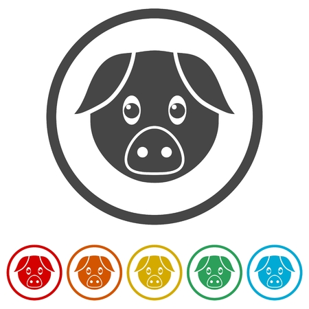 Vector pig icons set - Illustration