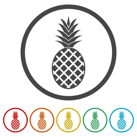Pineapple Design, vector icons set