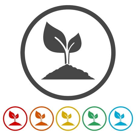 Young plant vector icons set