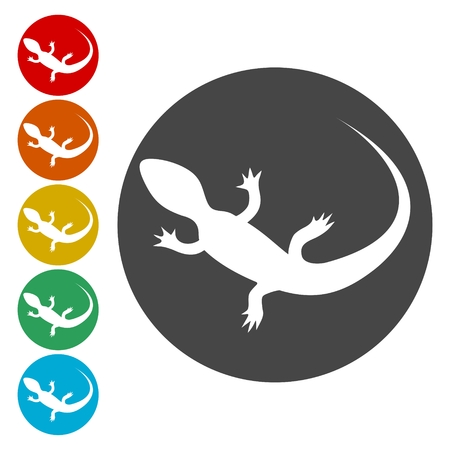 Lizard icons set vector - Illustration