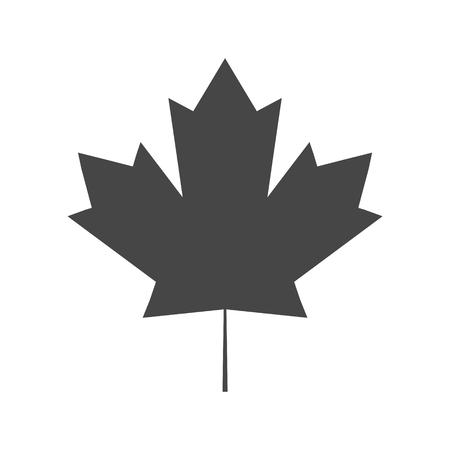 Vector Maple Leaf Icon 일러스트