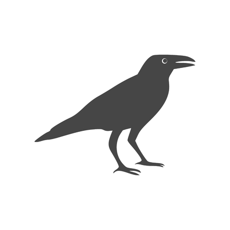 Crow vector illustration design, Crow silhouette