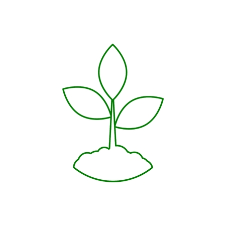 Plant sprout, Plant eco