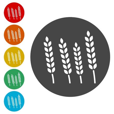 Wheat icon Ilustração