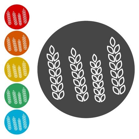 Wheat icon Illustration