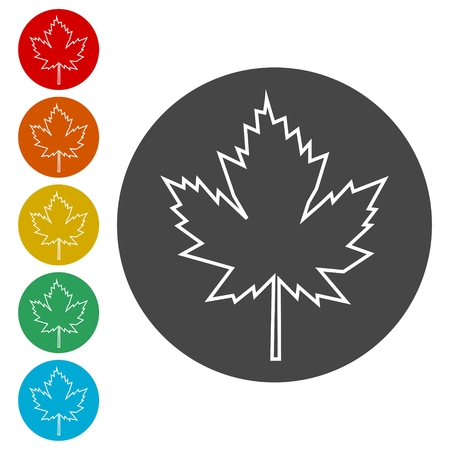Vector Maple Leaf Icon 矢量图像