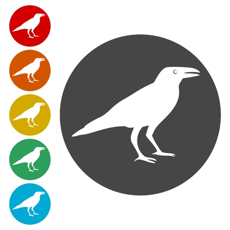 Crow vector illustration design, Crow silhouette Vector Illustration