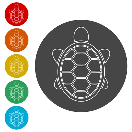 Turtle Icon Flat Graphic Design - Vector Illustration
