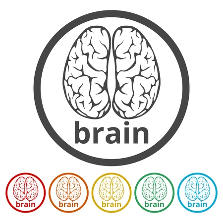 Human brain concept, Brain   design vector template, 6 Colors Included  イラスト・ベクター素材