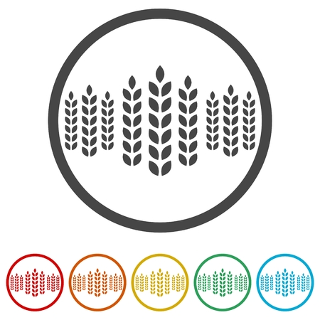 Wheat icon, Wheat ears icon, 6 Colors Included