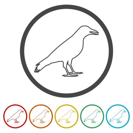 Crow vector illustration design, Crow silhouette, 6 Colors Included