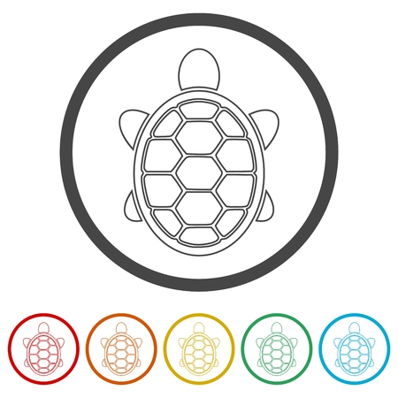 Turtle Icon Flat Graphic Design - Vector Illustration, 6 Colors Included
