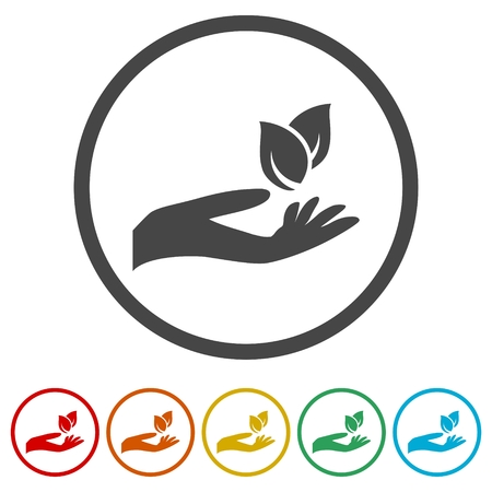 Leaf in hand icon, Leaf on the hand, 6 Colors Included