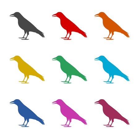 Crow vector illustration design icon, Crow silhouette, color icons set