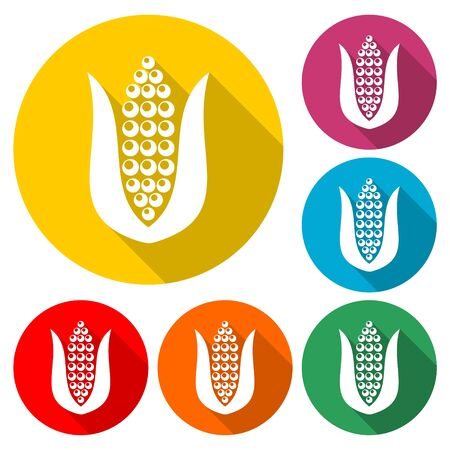 Corn icon, Corn icons and symbols, color icon with long shadow
