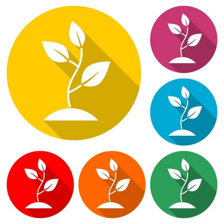 Plant sprout icon, Plant eco, color icon with long shadow Çizim