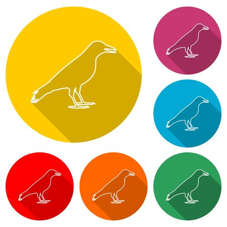 Crow vector illustration design icon, Crow silhouette, color icon with long shadow