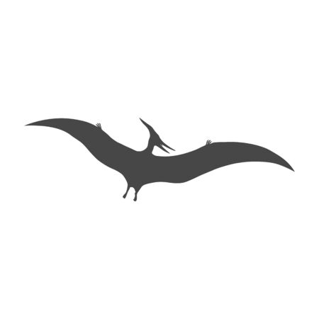 Pterodactyl icon, Vector drawing, Pteranodon bird