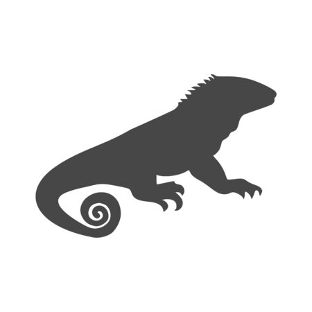 Chameleon icon, Simple Vector Chameleon