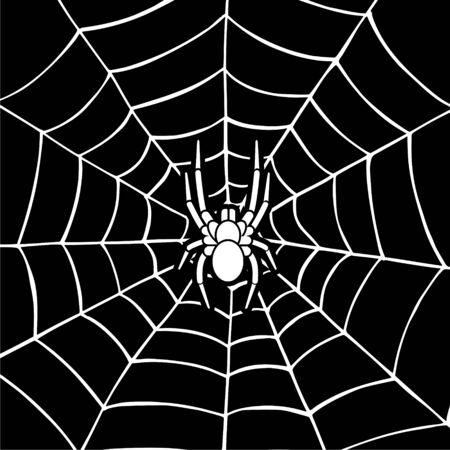 Spider web sticker illustration