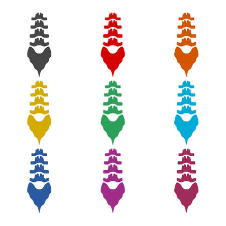 Spine structure icon , color set