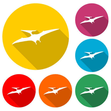 Pterodactyl icon, Pteranodon bird, color set with long shadow