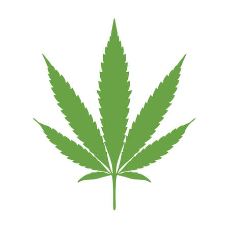 Marijuana leaf icon, Cannabis leaf icon or logo 일러스트