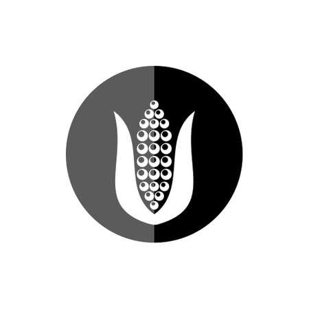 Corn icon or symbol Illustration
