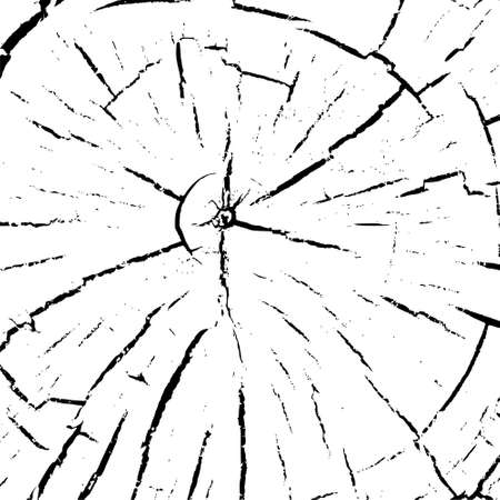 Tree ring icon, wood trunk, Black and white background