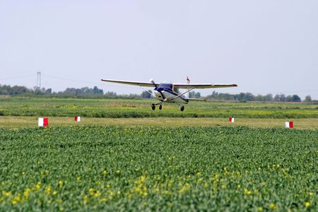 Agricultural plane is flying above green fileds photo