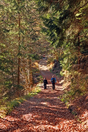 Couple are trekking at colorful forest Stock Photo