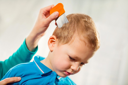 Mother treating son's hair against lice at home