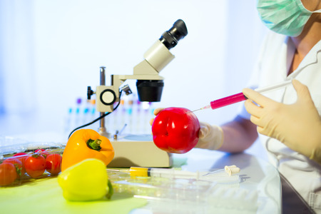 Food testing in the laboratory. GMO food. Laboratory
