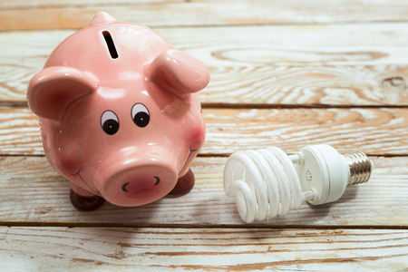 save electricity: Piggy Bank and Energy Saving Bulb on Wooden Background Stock Photo