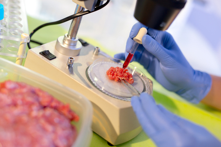 food inspection: Food quality control expert inspecting at meat specimen in the laboratory. Selective focus Stock Photo