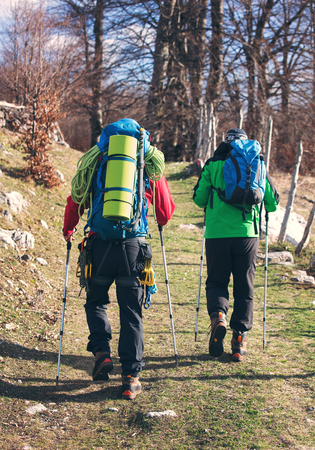 Two men hiking. They go to camp through the forest