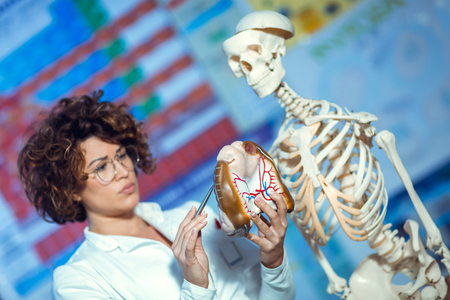 Medical doctor woman teaching anatomy using human brain model Stock Photo