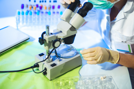 Woman in a laboratory working with a microscope, close up Stock Photo