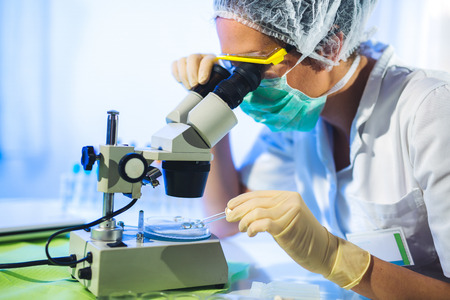 Woman in a laboratory working with a microscope