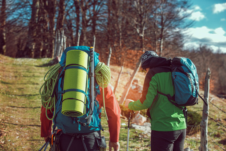 Two men hiking. They go to camp through the spring forest