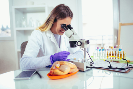 Food quality female control expert inspecting at meat specimen in the laboratory using a microscope. Stock Photo