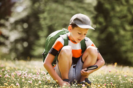 Young boy exploring nature in a meadow with a magnifying glass