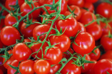 Closeup of a bucket of Tomatoes in a typical Tuscan Market