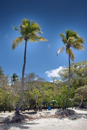 Detail of Saint Thomas in the US Virgin Islands photo