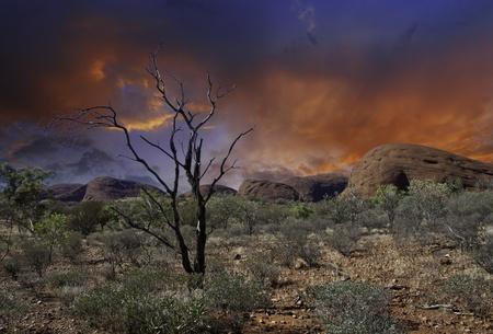 オーストラリアのアウトバック、北方領土のライト
