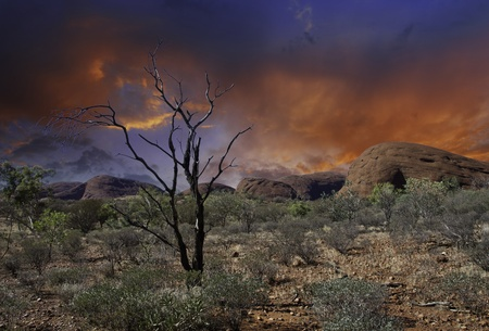 aborigen: Luces de Outback australiano, territorio del Norte